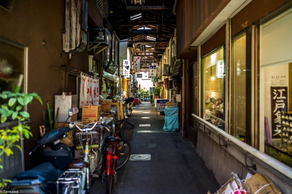 tanisawaphoto-1001879
