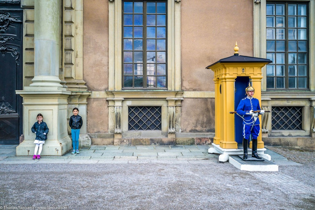 guard at the castle